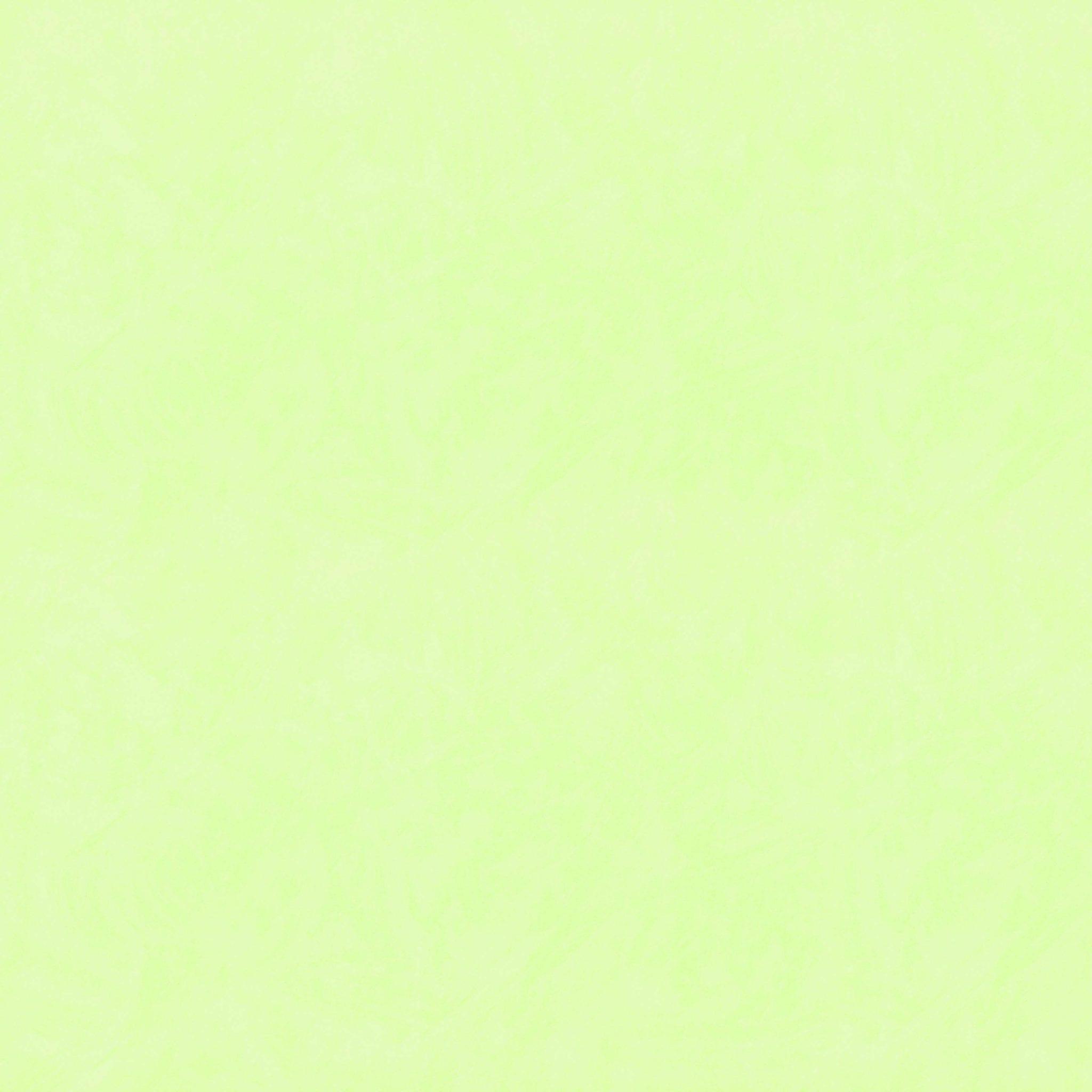 2033 3 verde claro cinthiasa for Color verde grisaceo para paredes