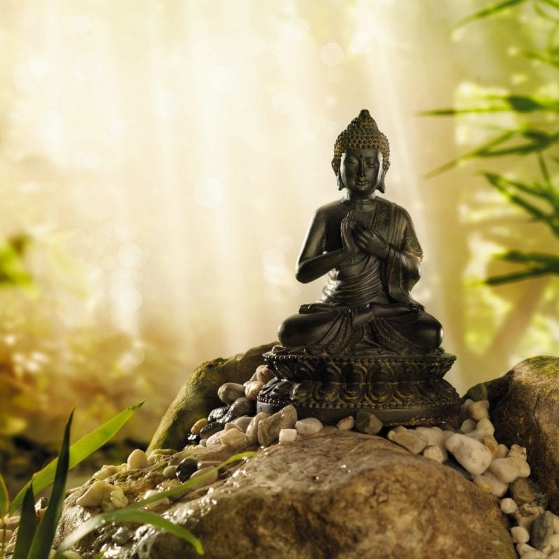 1-610_buddha