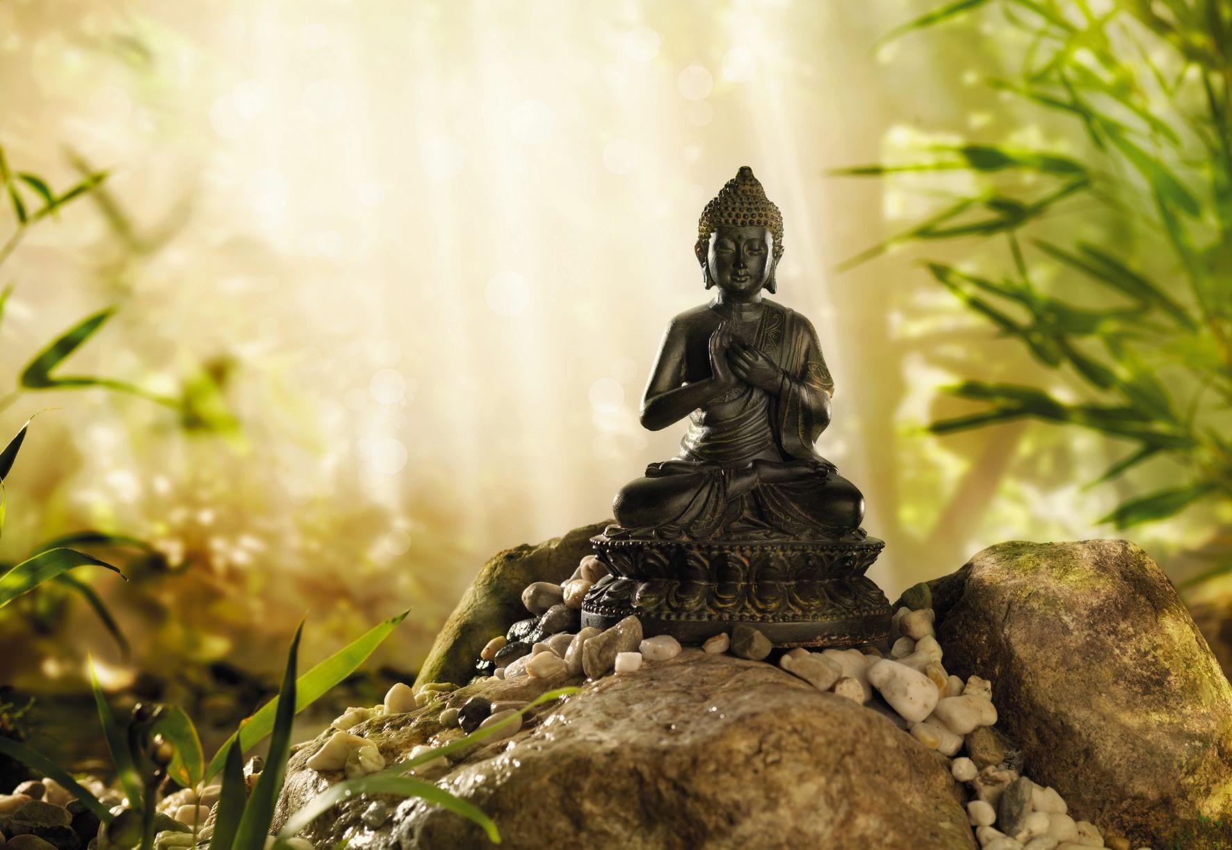 Fotomural Buda 1610 Komar