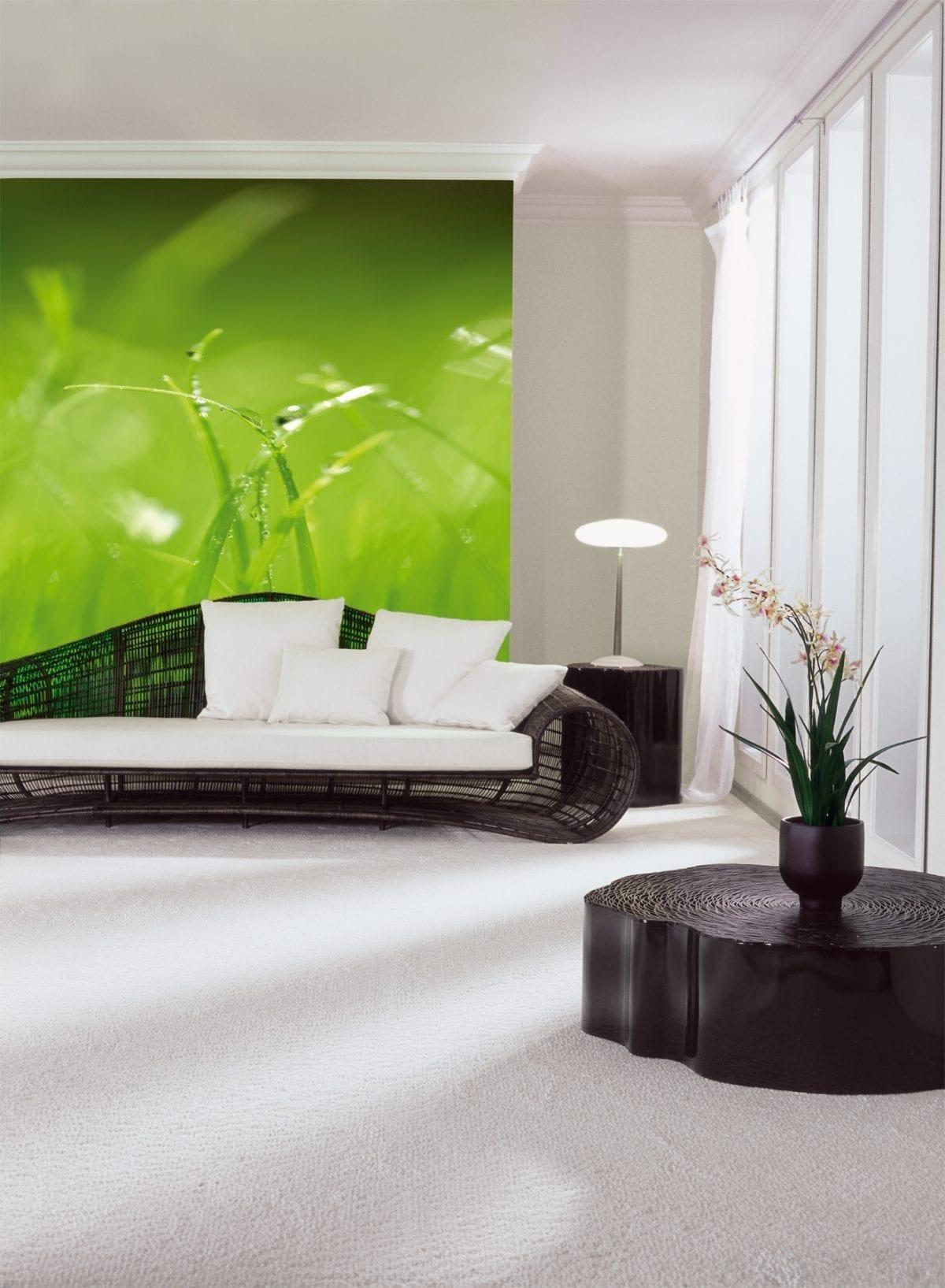 Fotomural Pasto verde 8886 - Komar