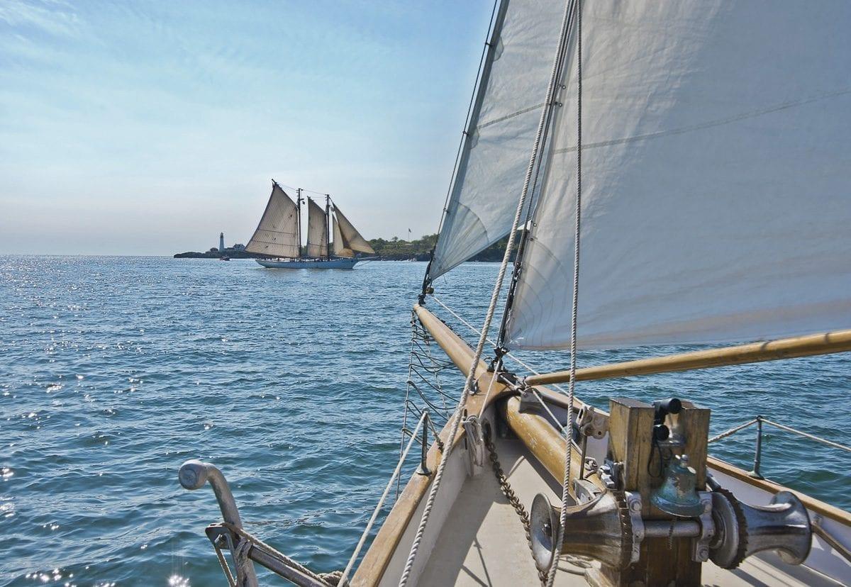 Fotomural Sailing 8526 Komar