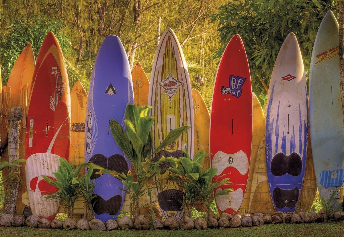 Fotomural Tablas de Surf Maui 8902 Komar