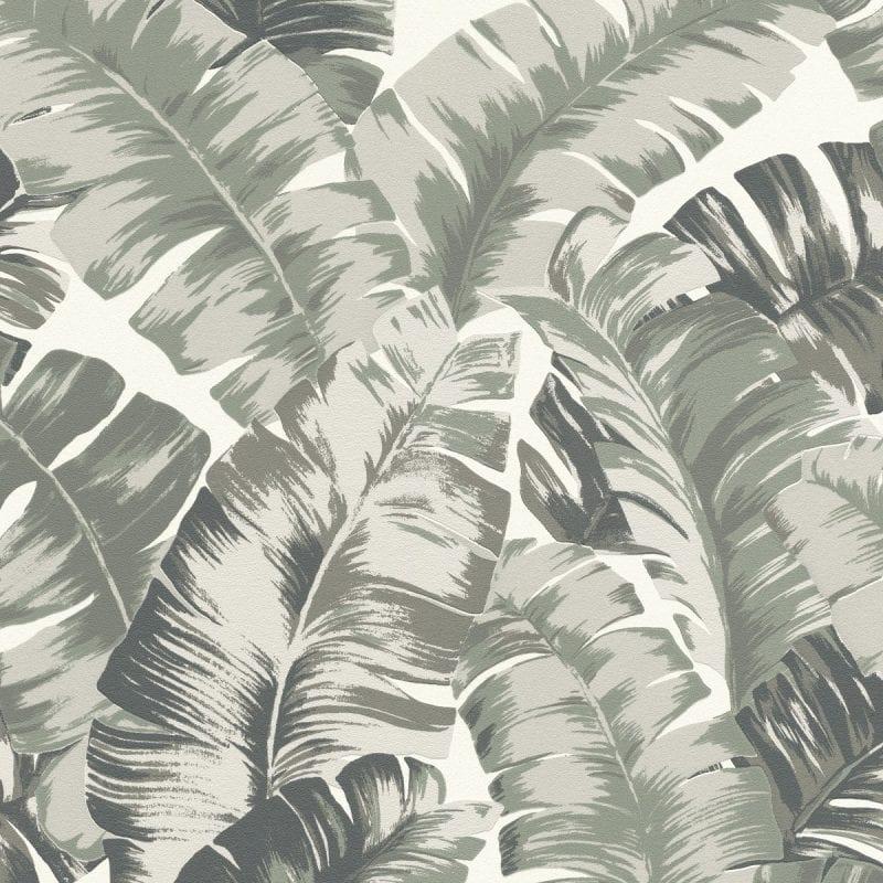 Papel mural hojas tropical verde YUCATAN 535600 Rasch
